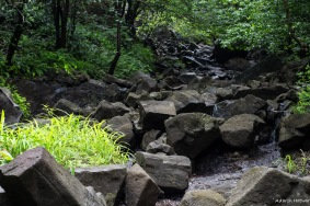 If you deviate from the marked path(like us), you'll climb these