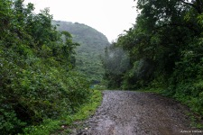 The trail from Malawali is super easy...