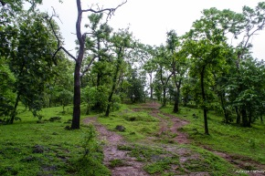 After the streams, the trail becomes steeper till 'Havan'