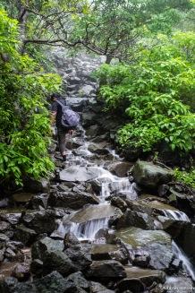 Slippery rocks to climb over