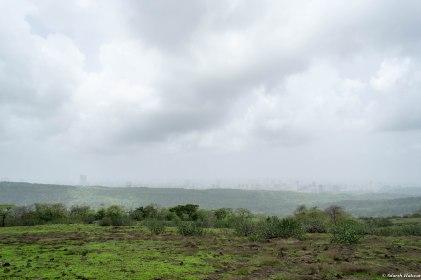 Plateau overlooking the city, between Jhambhulmal and Kanheri Caves