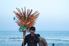Pied-piper of Marina Beach