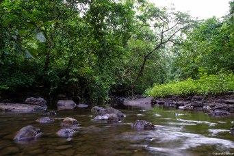 Streams to cross