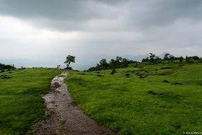 Prabalmachi is a flat grassy plateau