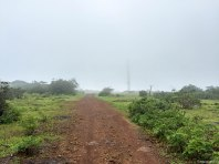 It rained on the way down, giving the environs a misty feel