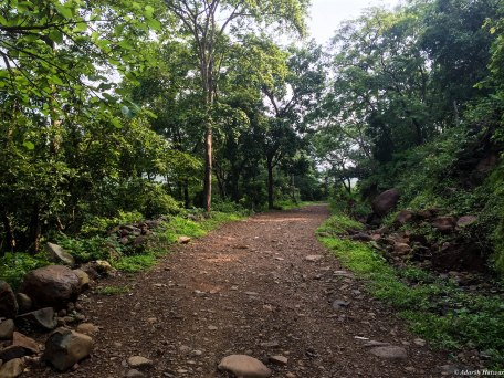 Tungareshwar (9)