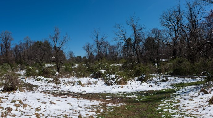 Ridley Creek-16