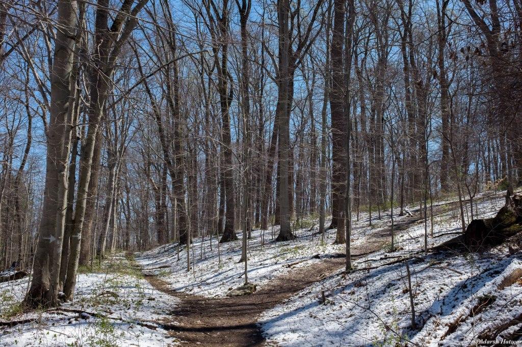 Ridley Creek-4